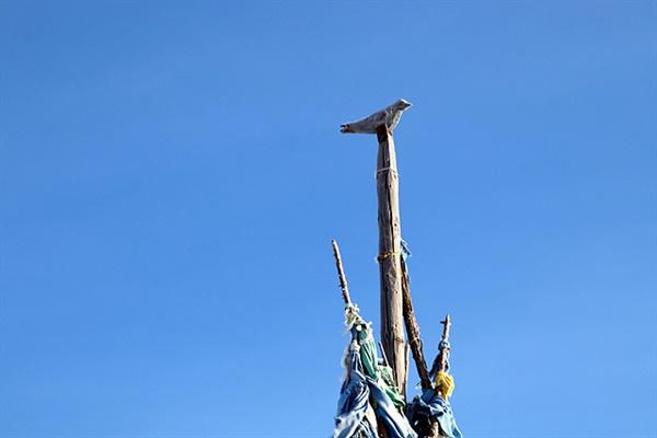 다르하드 저지대로 들어가는 입구의 가장 큰 오보끝에는 나무로 새를 만들어 올려놓은 솟대가 있었다. 샤머니즘에서 새들은 영혼의 안내자로 인간과 하늘과 땅과의 메신저 역할을 한다. 우리의 솟대가 이곳에서 전래되지 않았나 하는 생각을 해보았다.