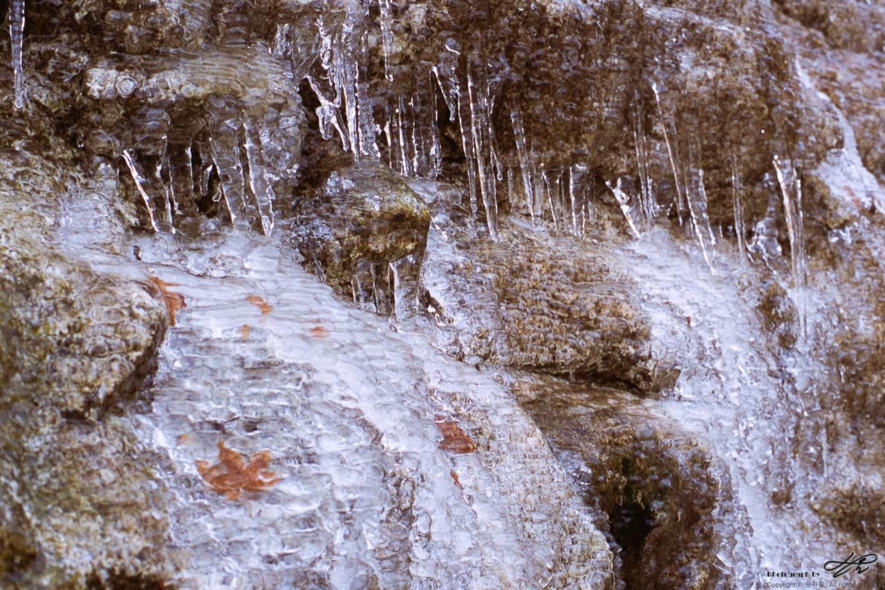 눈 대신 얼음 (Contax S2/RDP3)바위를 타고 흘러내린 물이 가을을 품고서 멈추었다.