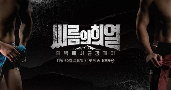 KBS 2TV <태백에서 금강까지-씨름의 희열>