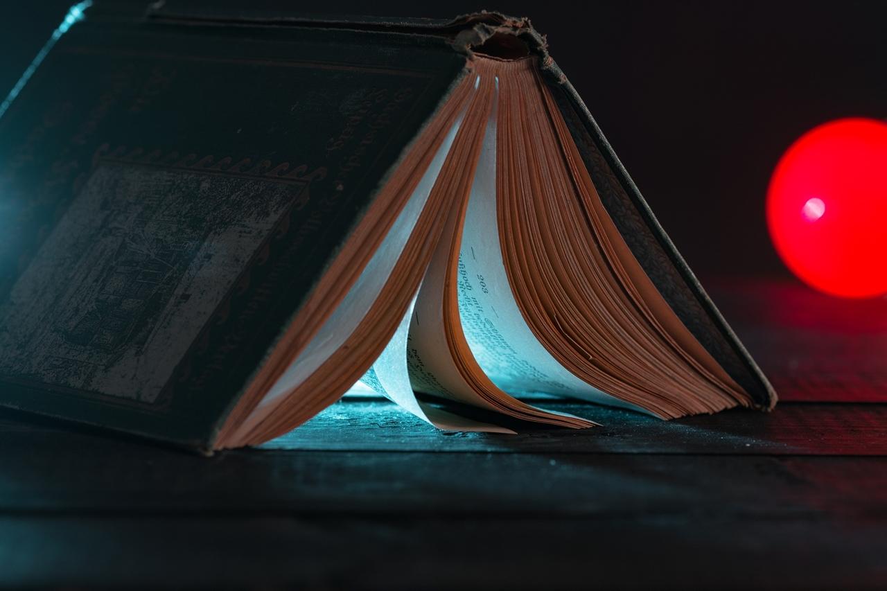 나는 언니의 등 뒤에서 흘러나오는 불빛에 의지해 일기를 쓰고 소설을 쓰고 편지를 썼다.