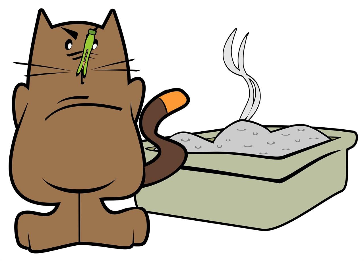 반려 동물 배설물로 인해 배수구 악취가 발생하는 경우가 있다.