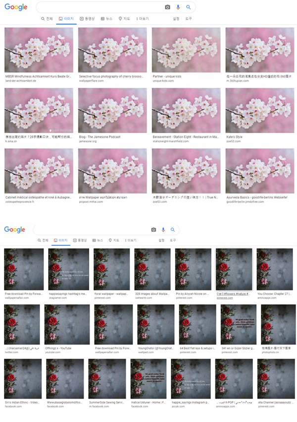 임재현의 싱글 '비싼 옷' 표지의 원본 사진들은 인터넷 무료 이미지 공유 사이트에서 쉽게 얻을 수 있는 것으로 보인다.