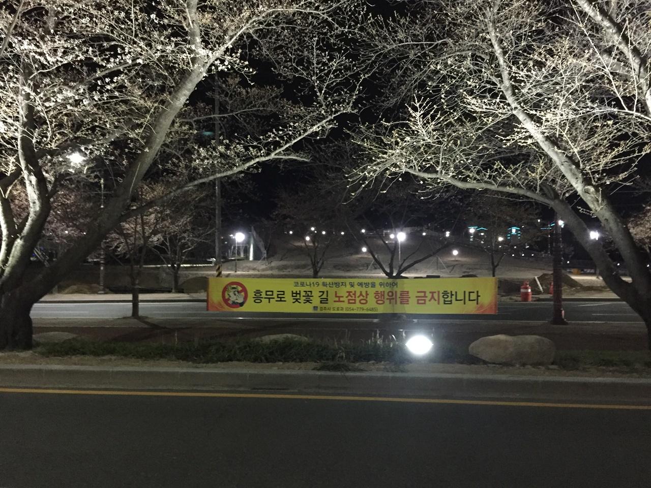 경주 흥무로 벚꽃길에 '노점상 행위 금지' 현수막이 걸려 있는 모습