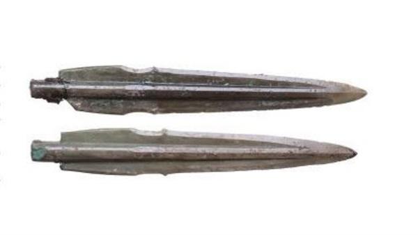 2008년 재조사 때 통나무 관 밑에서 추가로 발견된 칼끝에 옻칠이 되어 있는 세형동검 2점