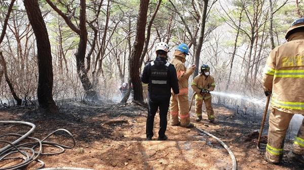 소방관들이 방화범이 지른 산불을 진화하는 모습