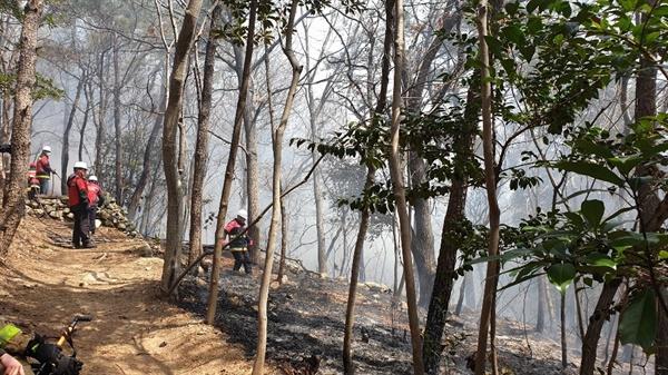 방화범이 석천사 주변 등산로에 16일부터 24일까지 총 6번의 불을 질렀다.