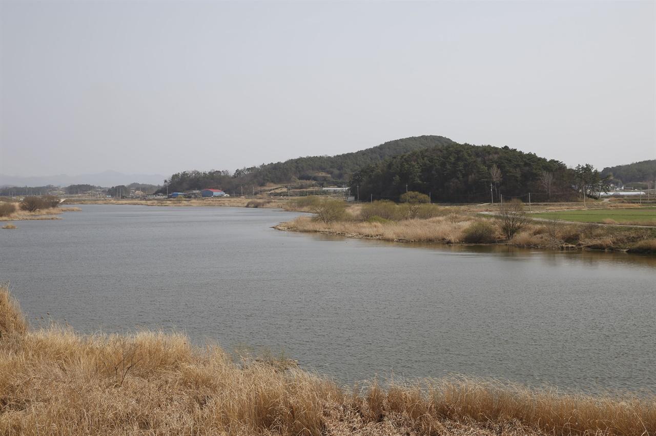 영산강 죽산보에서 본 송죽마을 전경. 나주 송죽리는 1519년 기묘사화 때 낙향한 유생들의 피맺힌 사연을 지니고 있는 마을이다.