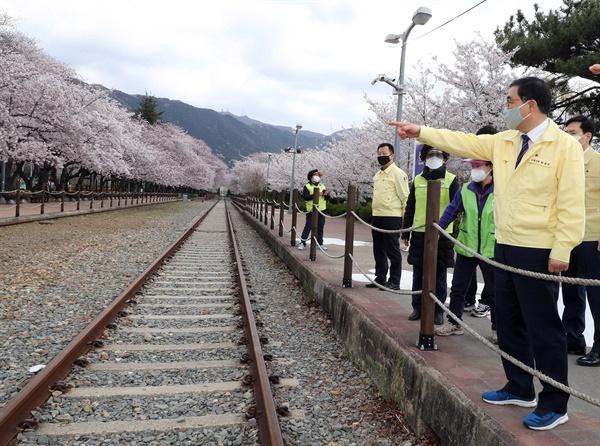 허성무 경남 창원시장이 3월 29일 전면 폐쇄된 진해 경화역을 찾아 살펴보고 있다.