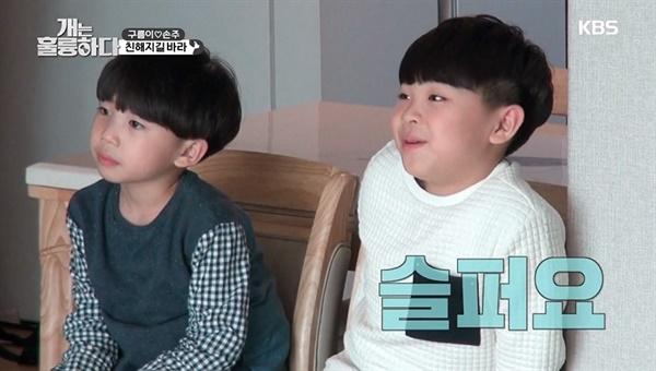 30일 방송된 KBS2 <개는 훌륭하다>에 고민견으로 등장한 구름이와 보호자의 손자들.