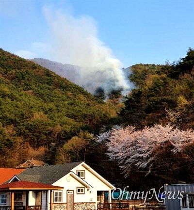 4월 2일 오후 경남 창원시 마산합포구 진전면 여양리 야산에 산불 발생.