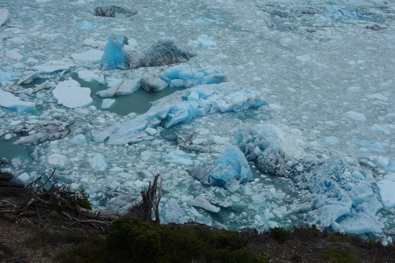 떨어져 나온 빙하 조각들. 조각이 조각한.