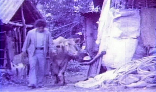 서울영상집단이 1986년에 만든 8mm 영화 <파랑새>