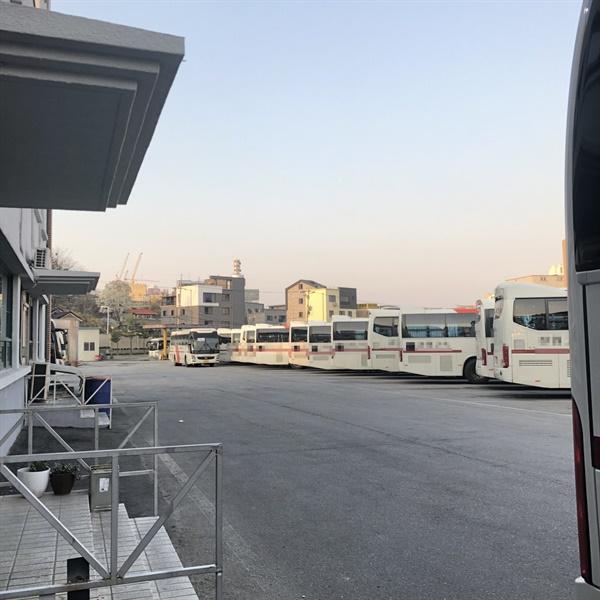 춘천시외버스터미널 주차장에 운행을 멈춘 버스들로 가득 차 있다
