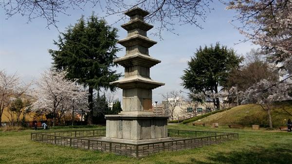 광주공원 성거사지 5층 석탑에 봄이 내려 앉았습니다