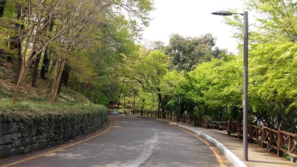 '사회적 거리두기'로 공원길이 한가합니다