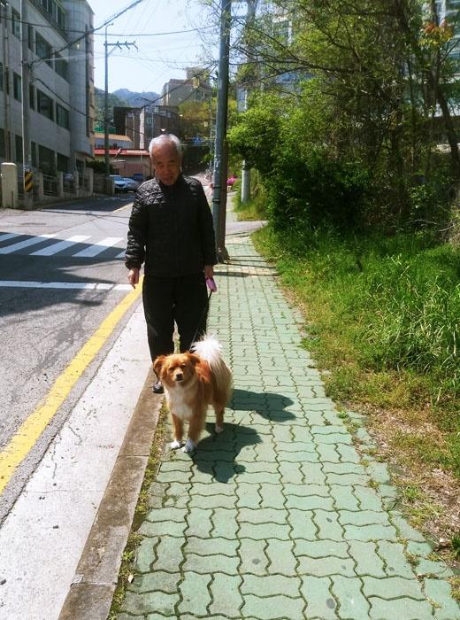 할아버지와 개