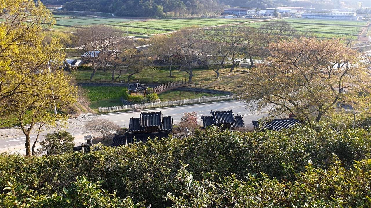 영양재 옆 차밭에서 내려다 본 임천정사와 마을숲. 봄햇살에 신록이 살아나면서 예쁜 수채화 풍경을 보여주고 있다.