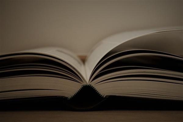 쉽게 페이지가 넘어가지 않는 책, 높은 수준의 인지 능력을 요구하는 책을 읽을 땐 글을 쓸 때처럼 자꾸 뇌가 내게 더 쉬운 길을 가라고 설득했다.