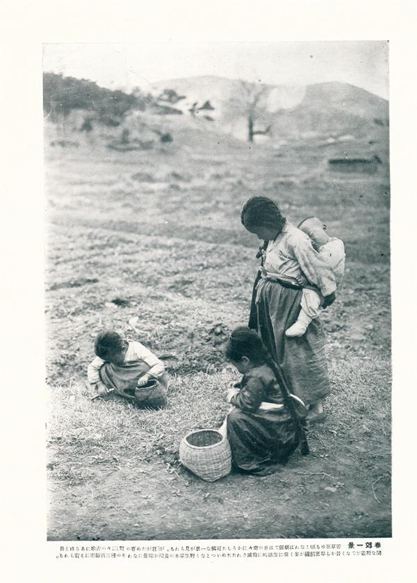 보릿고개에 나물을 캐는 아이들을 담은 1930년 사진