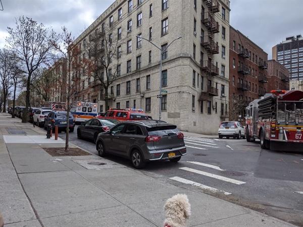 구급차가 즐비한 뉴욕 맨해튼의 동네 개의 산책을 위해 집 앞에 나왔는데, 구급차, 소방차, 경찰차 여러 대가 있다.
