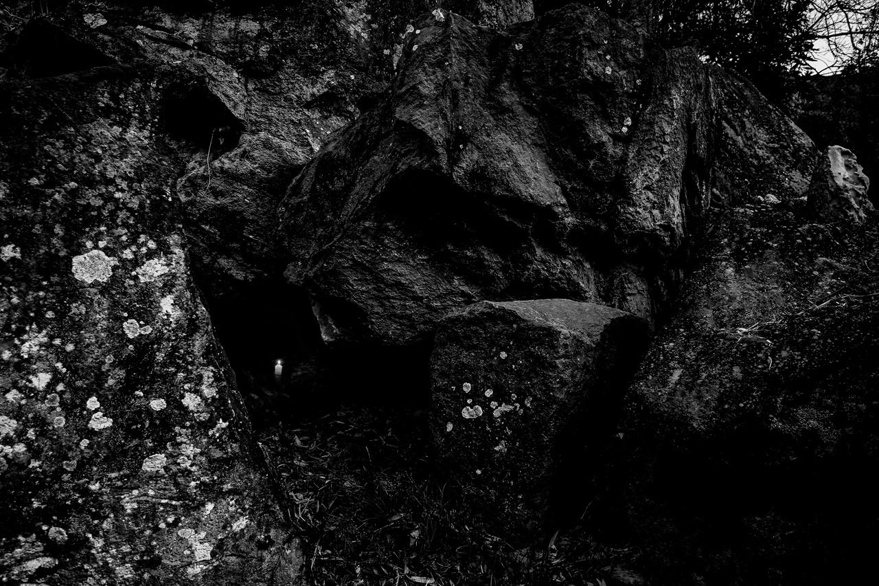 """제주불교 동백으로 화현하다 개막  2020년 5월 11일 조계사에 있는 한국불교역사문화기념과 나무갤러리에서 '제주4·3과 불교'전시중 김계호 작가의 """"숨다"""""""