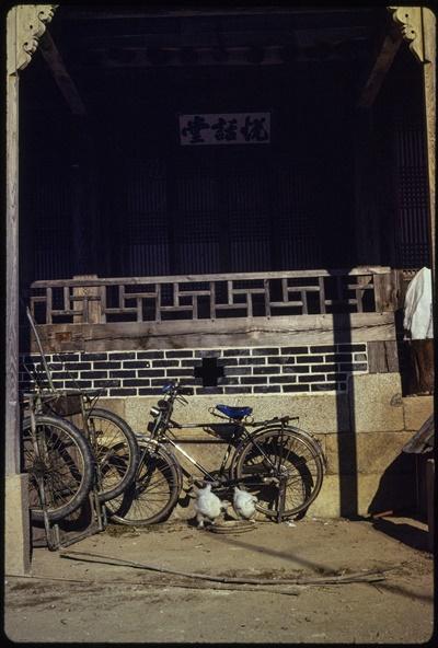 평화봉사단 자격으로 1979년~1981년 한국에 머물렀던 폴 코트라이트가 자신이 근무하던 나주에서 찍은 사진이다.