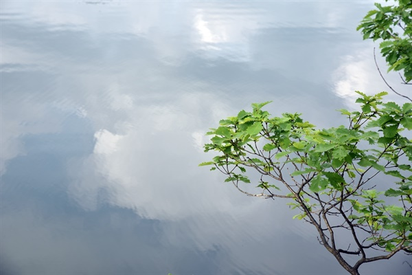 호수에 비친 구름
