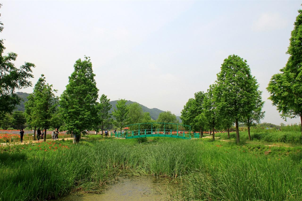 울산 태화강 국가정원내에 설치한 모네의 다리 모습