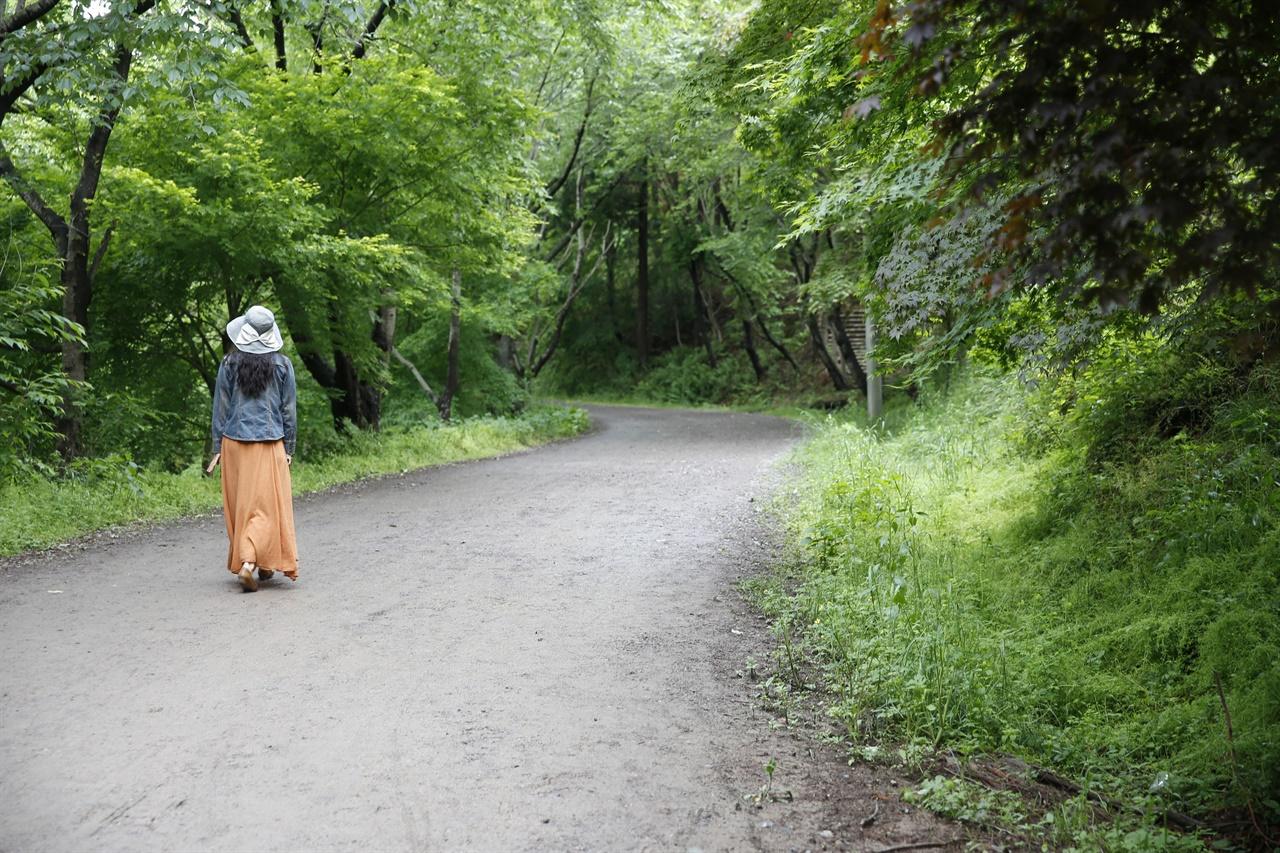 5·18사적지로 지정돼 있는 화순 너릿재 옛길. 엿둣빛으로 봄물을 가득 머금은 숲길이 호젓하다.