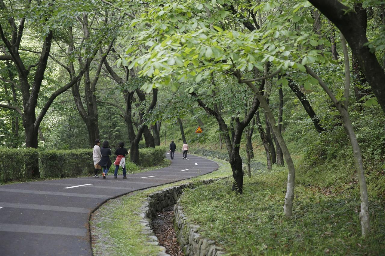 화순 너릿재 옛길의 봄날 풍경. 차량은 다닐 수 없고 사람과 자전거만 오갈 수 있도록 하고 있다.