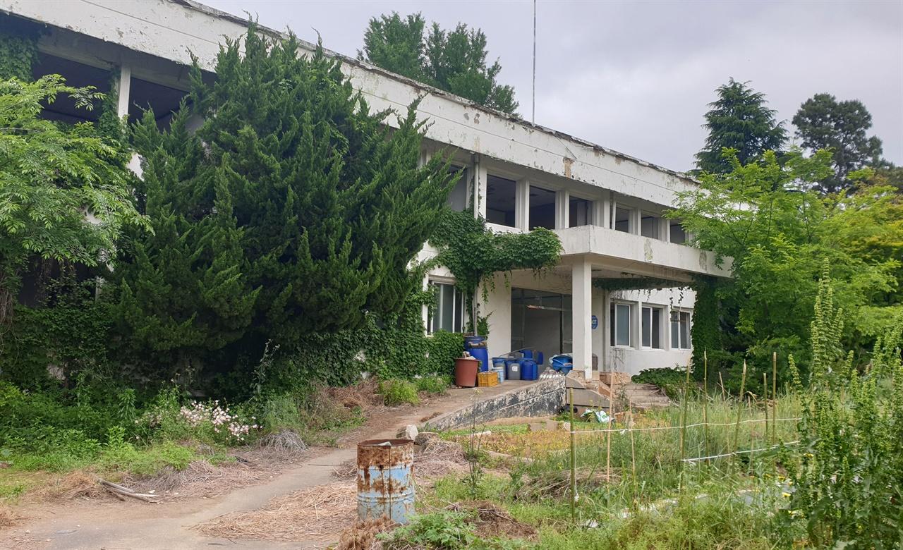 방치되고 있는 옛 505보안부대. 내부 천장과 계단이 무너지고, 나무와 유리조각이 여기저기 나뒹굴고 있다. 5·18사적지 26호로 지정돼 있다.