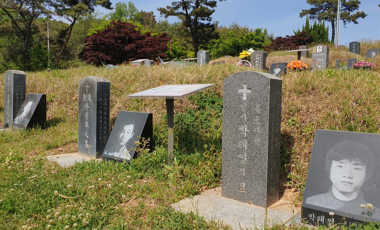 5·18 항쟁 희생자들이 처음 묻혔던 광주 망월묘역. 80년 이후 민주화의 성지가 됐다. 당시 희생자들은 새 묘역으로 옮겨지고, 지금은 민족민주열사 묘역으로 관리되고 있다.