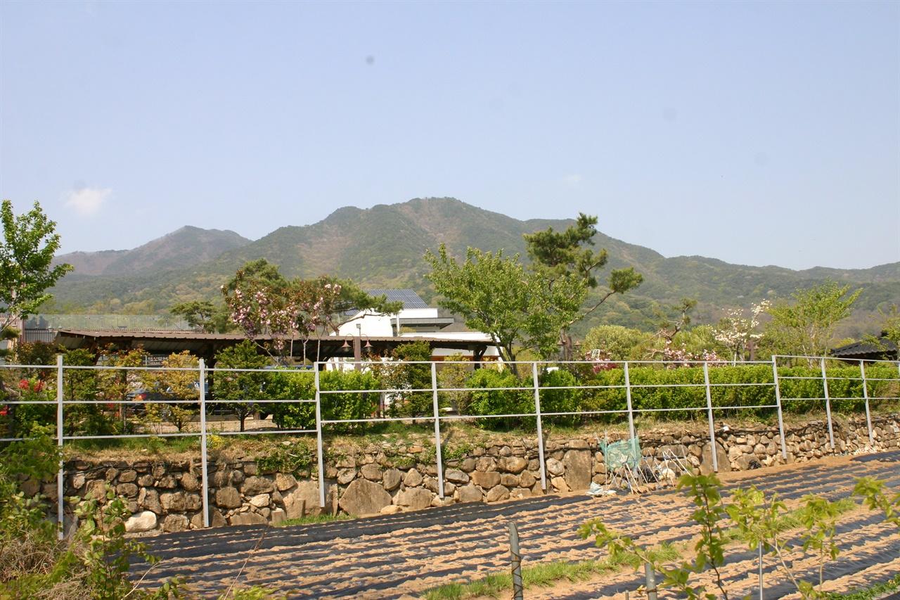 노태우 생가마을에서 바라본 팔공산