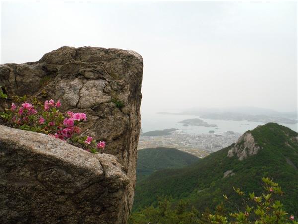 왕관바위 틈새에서 피어난 연홍빛 산철쭉꽃이 이쁘디이뻤다.