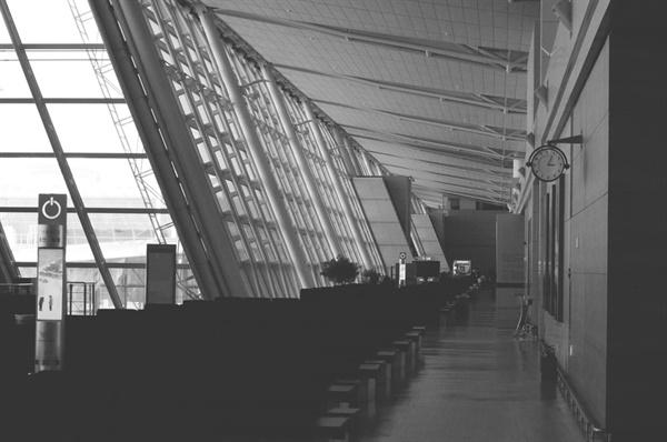 코로나19로 인해 공항은 정지됐고, 그곳에서 일하던 노동자들은 무급휴직을 사용해야만 했으며 구조조정, 정리해고를 겪었다.