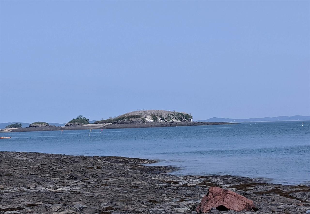 봉우리가 하얗게 보이는 섬은 오가도 5월부터 몰려온다는 백로 떼로 하얀 눈이 내린 것 같았다.
