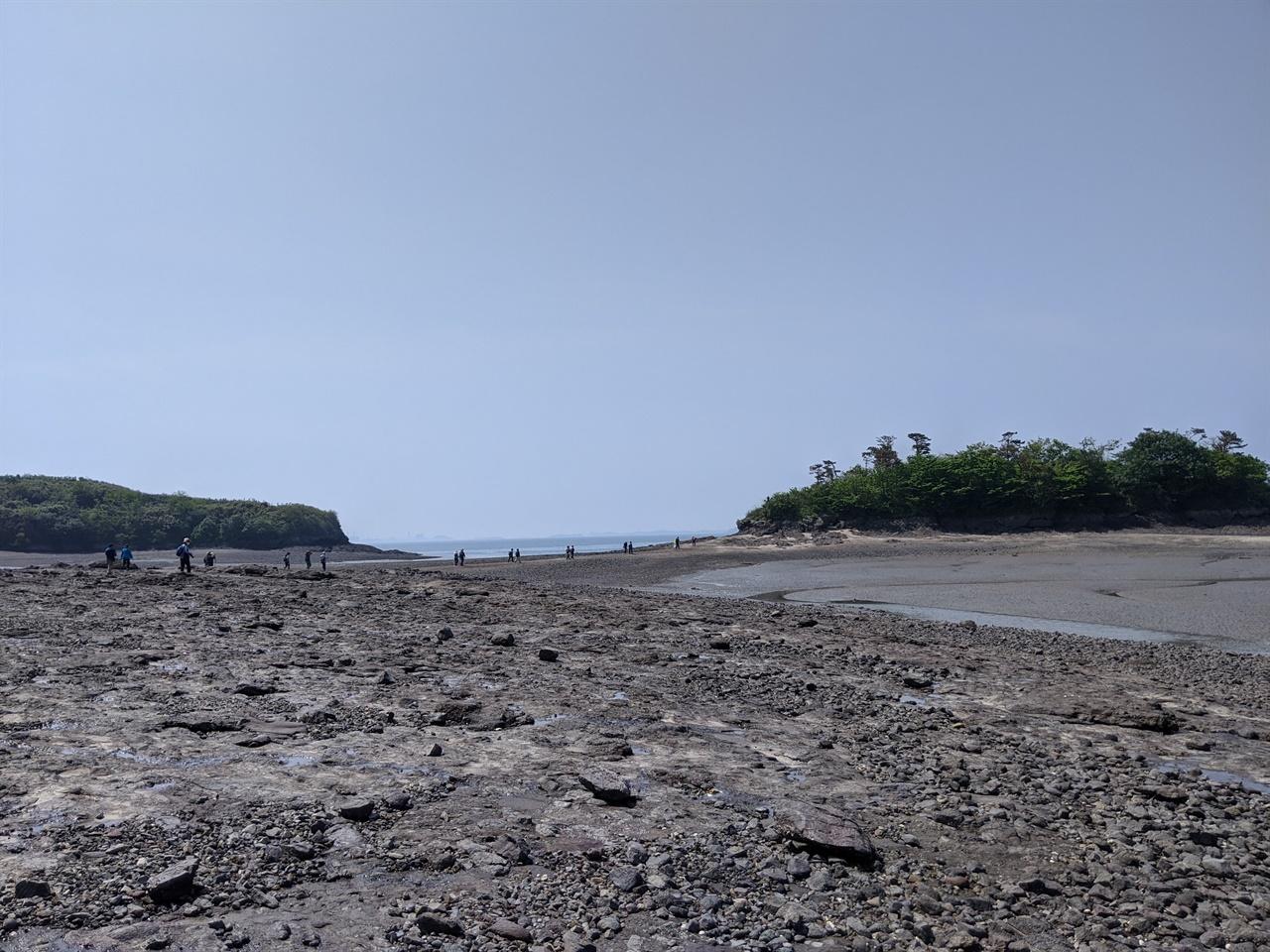 큰 달섬으로 가는 길 마침 썰물 때라 달섬으로 가는 바닷길이 열려 있었다.