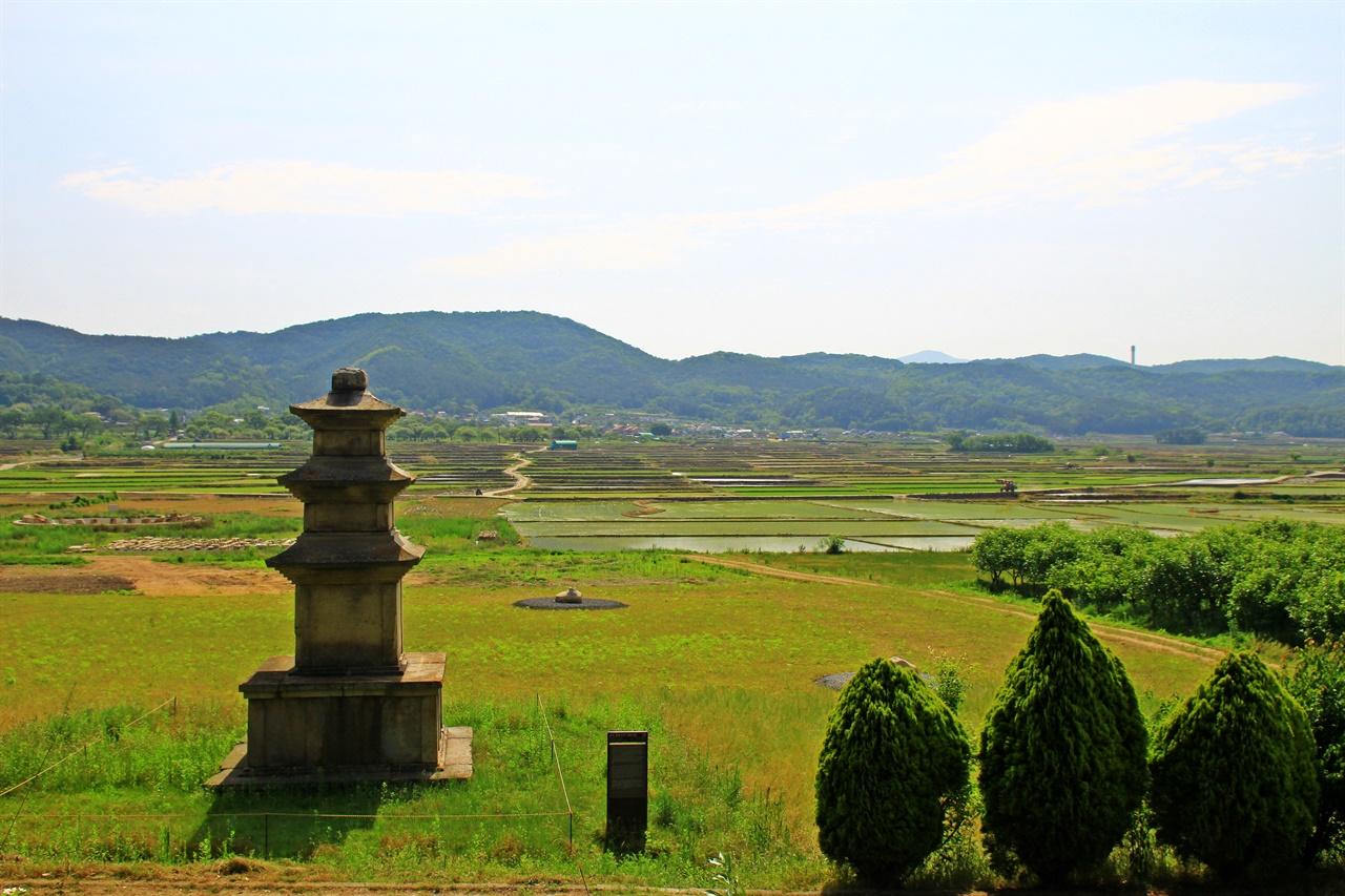 멀리 보이는 경주 진평왕릉 그리고 황복사지 삼층석탑과 보문 들판 모습