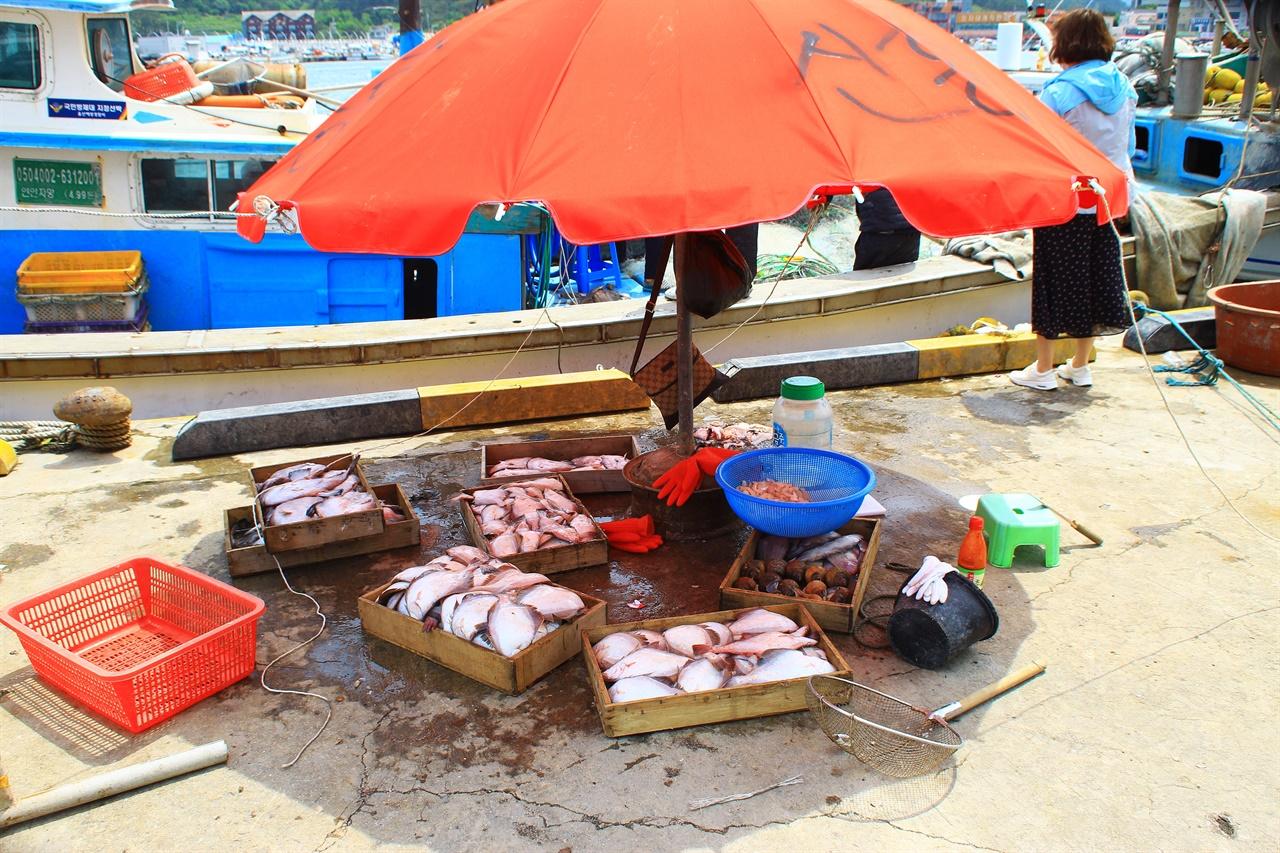 정자항 중간 상인들이 조림, 구이용 가자미를 상자당 판먀하는 모습