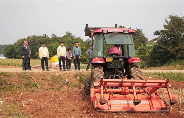 마늘가격 폭락이 예상되자 서산시는 지난달 30일까지, 난지형 마늘 83.4ha (1,114톤)를 산지 폐기하고 수급 안정 대책에 나섰다.
