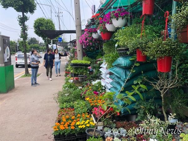 꽃 중·도매상이 몰려 있는 경기도 소재 한 화훼거리.