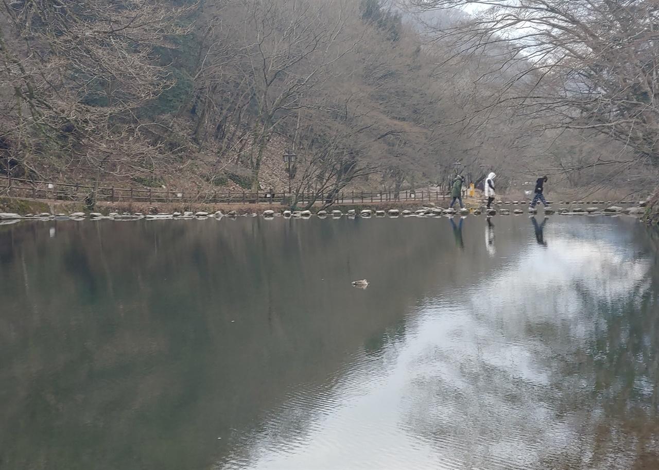 백양사 쌍계루 앞 징검다리 오리가 노니는 잔잔한 연못에 있는 징검다리를 건너는 사람들.