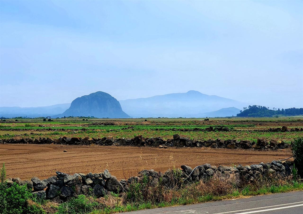 대정읍 하모리 해안도로에서 바라본 산방산 산방산 오른쪽으로 보이는 높은 산이 한라산이다.