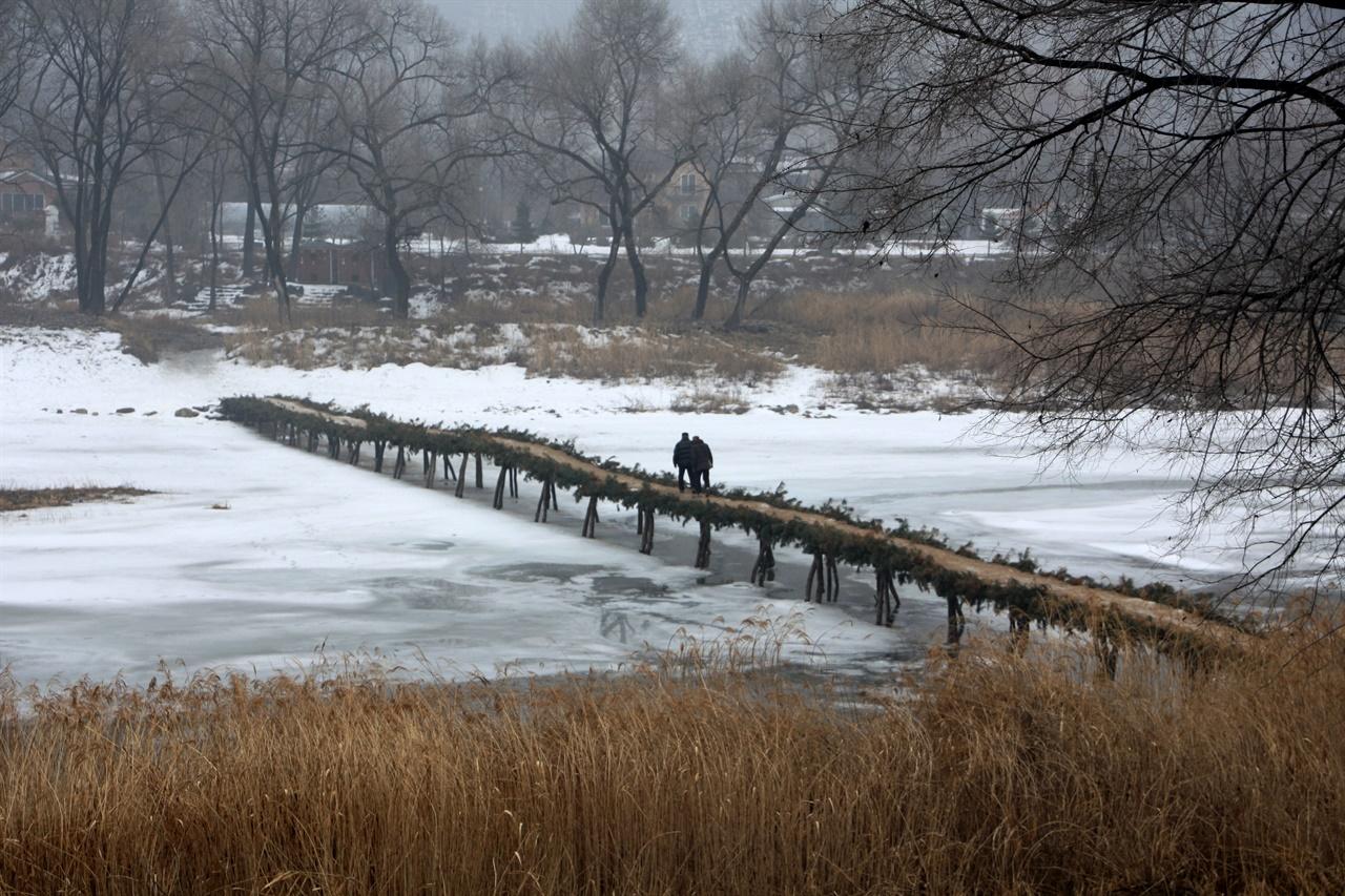 판운리_섶다리_겨울풍경 평창강에 있는 판운리 섶다리의 평화로운 겨울풍경