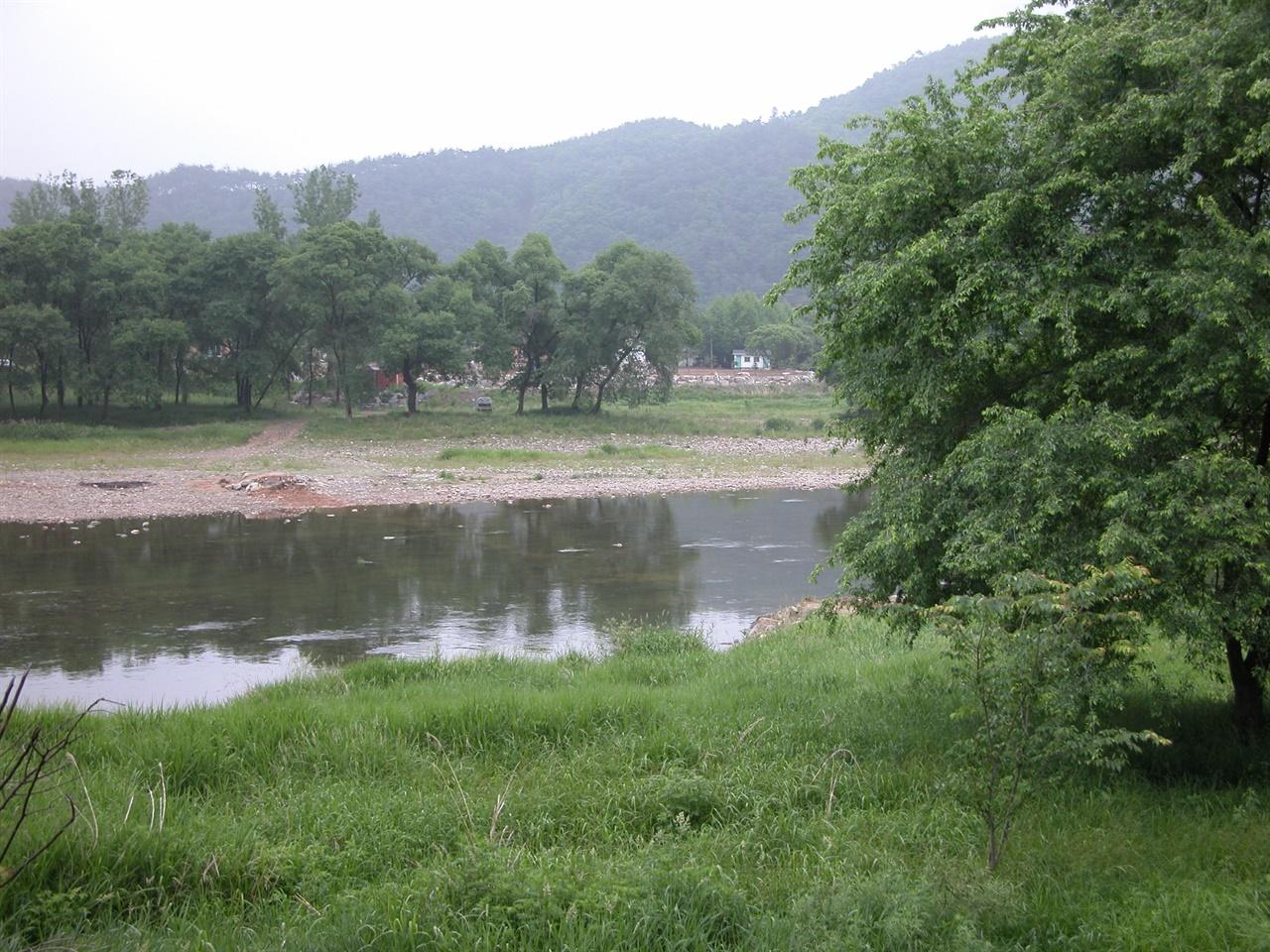 홍수에 대비하여 철거된 섶다리 한여름, 홍수에 대비하여 마을 주민들이 철거한 판운리 섶다리. 풍성한 나뭇잎과 대조적으로 다리가 사라진 자리에 선창만 남아있음.