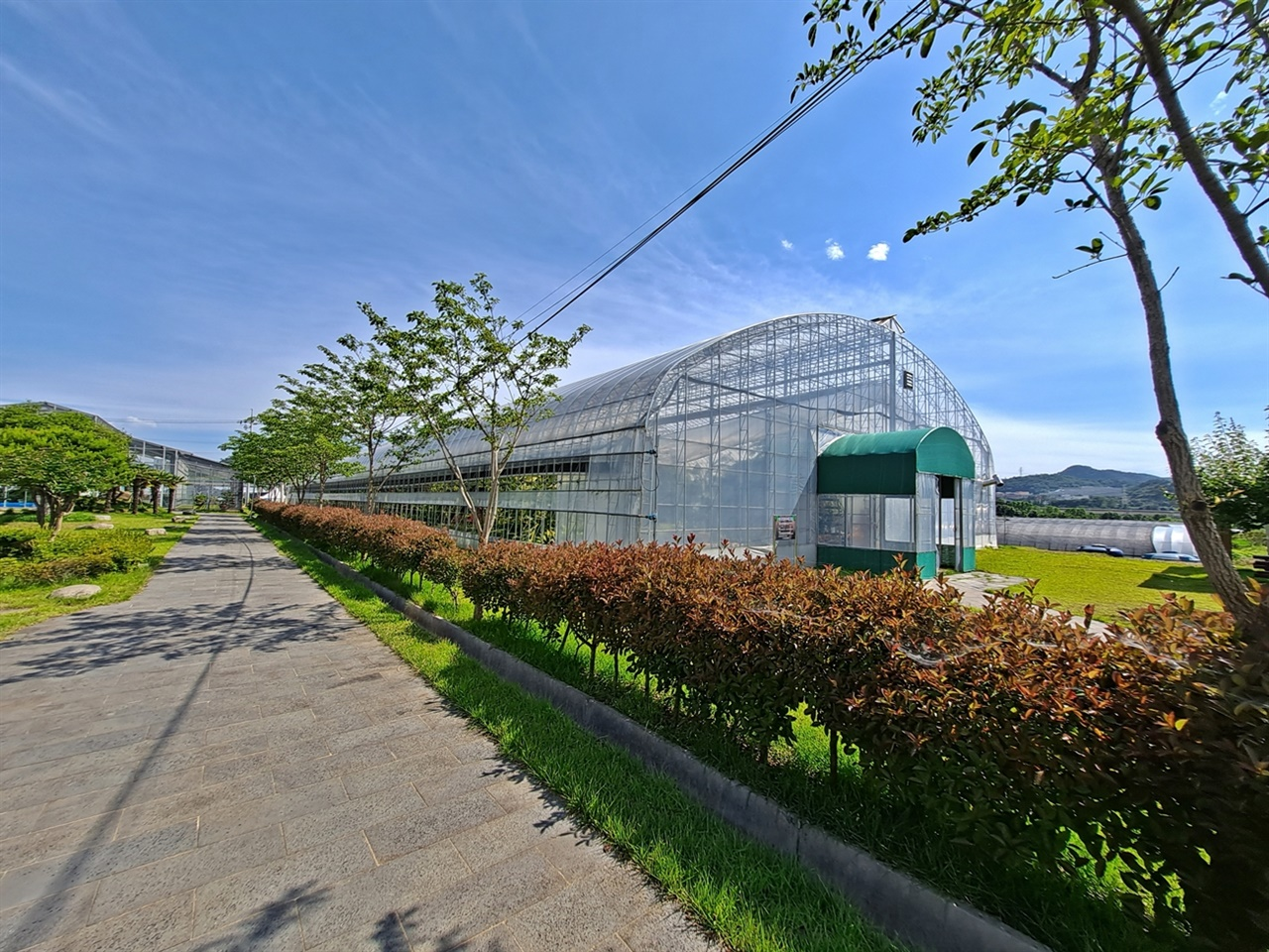 여수시 농업기술센터 아열대과수식물원 전경이다.