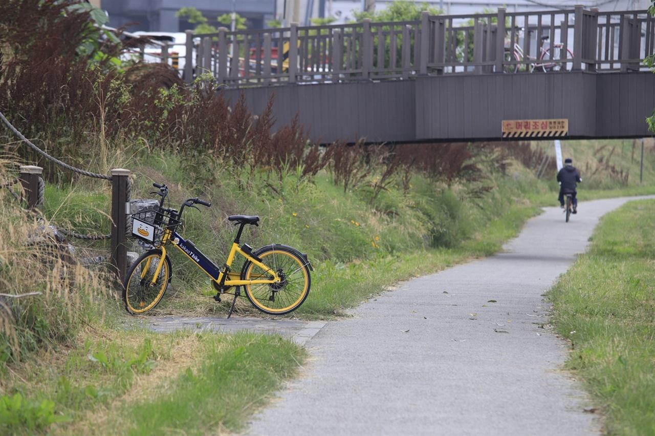 자전거가 답이다  동네 천변에 거치되어 있는 자전거. 자전거가 코로나 이후의 대안으로 하루빨리 자리잡기를 간절히 바란다.