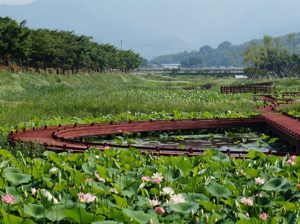 지리산정원 연꽃밭