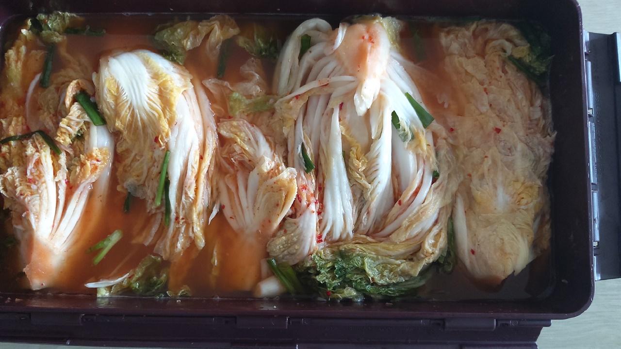 얼마전에 담근 여름김치라고 한다. 맛있어 보인다. 유의선은 행사가 끝나면 꼭 음식을 만들어서 나누어 먹는다.