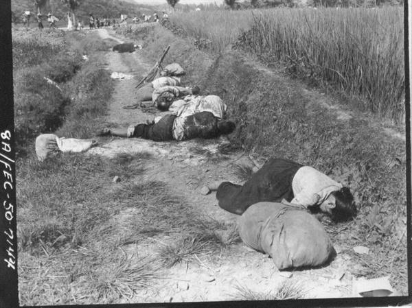 기총소사로 들길에 나뒹굴고 있는 피란민 시신들(1950. 8. 25.).